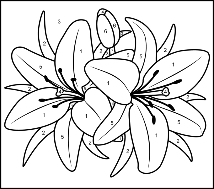 easy coloring pages for seniors