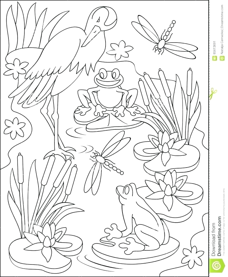 miss nelson is missing coloring pages