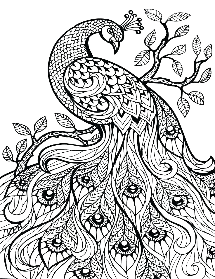 print out coloring pages adults