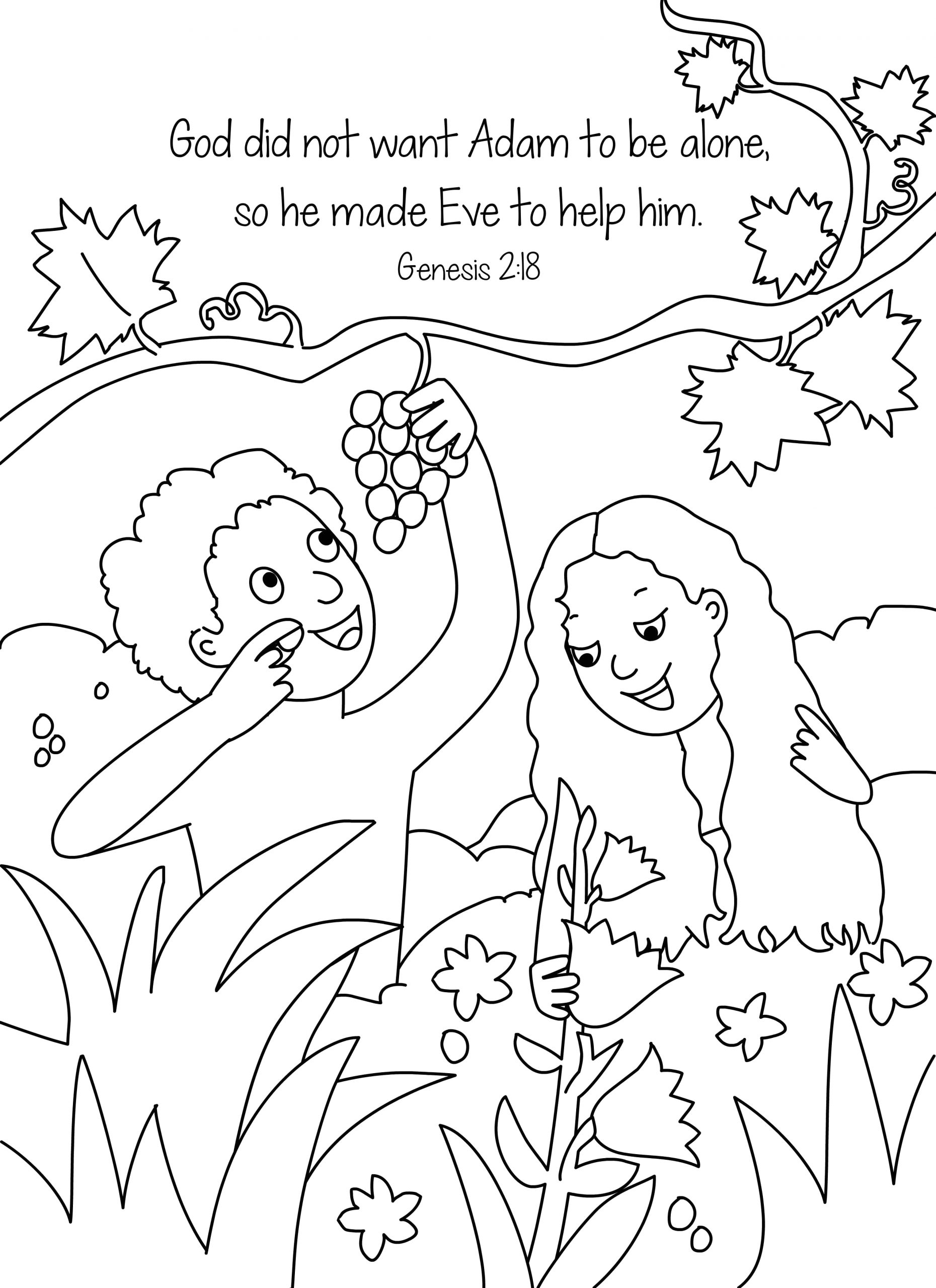 bible key point coloring page adam and eve