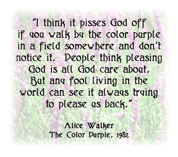 the color purple book quotes