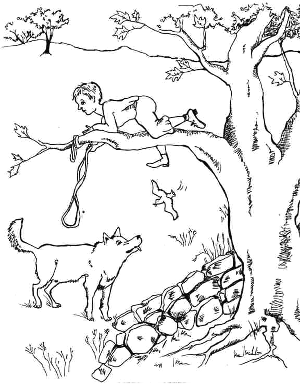Peter and the Wolf Story Coloring Pages Peter and the Wolf Coloring Pages 1000×1300
