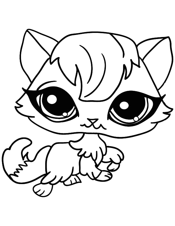 big eyed female cat for pet coloring page