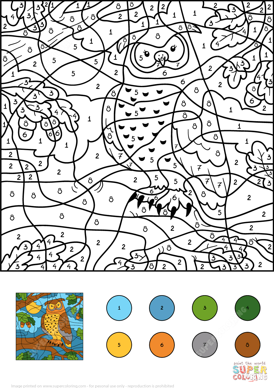 owl color by number