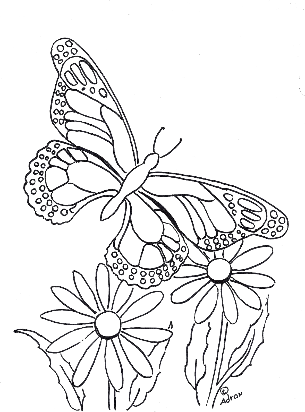 butterfly coloring page to print and