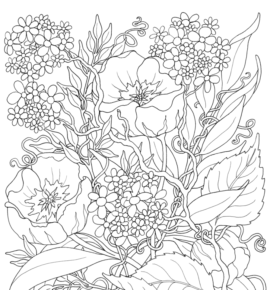 online summer printable coloring pages for adults