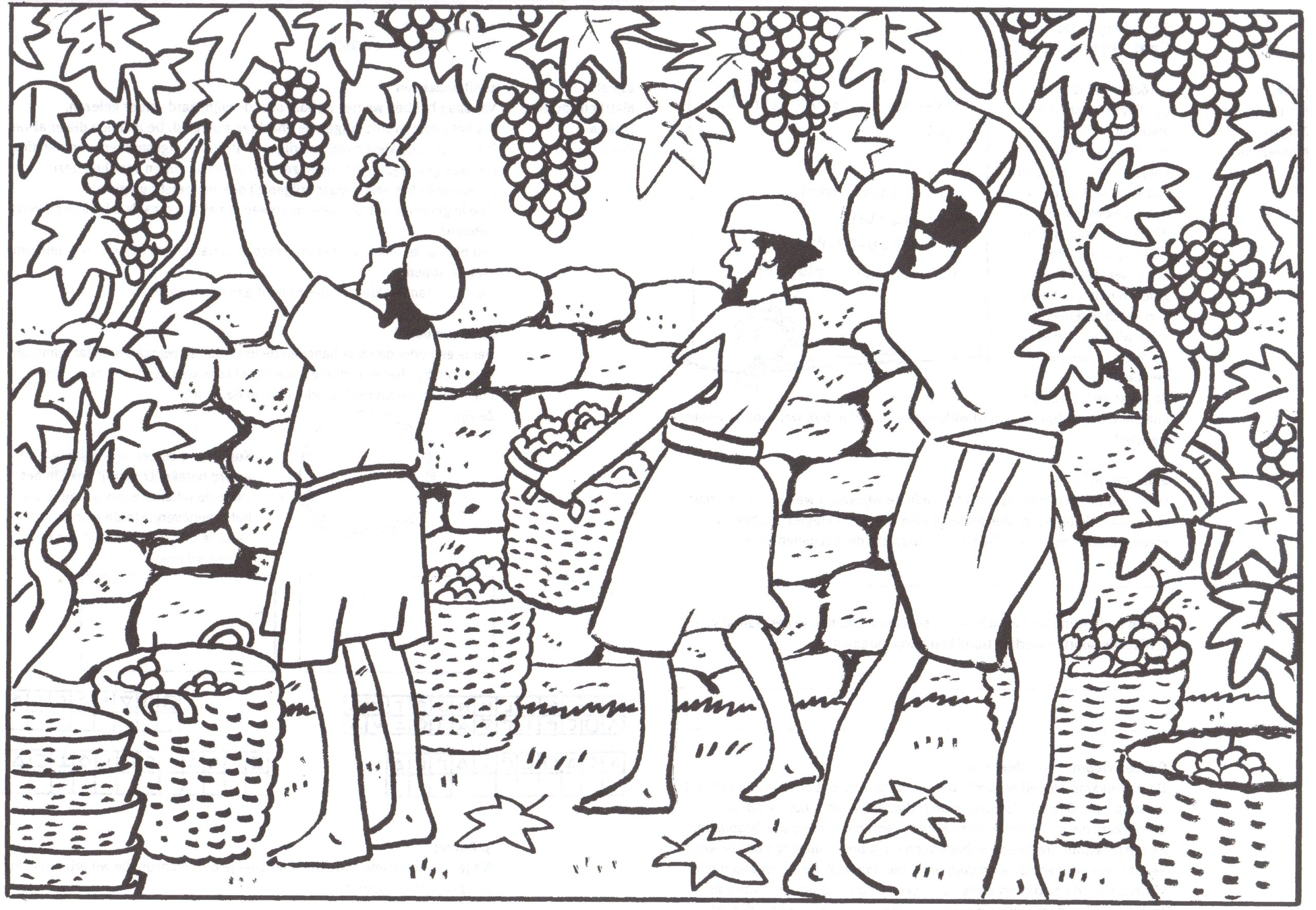 Parable Of the Workers In the Vineyard Coloring Pages Pin On Christian Coloring Pages Nt