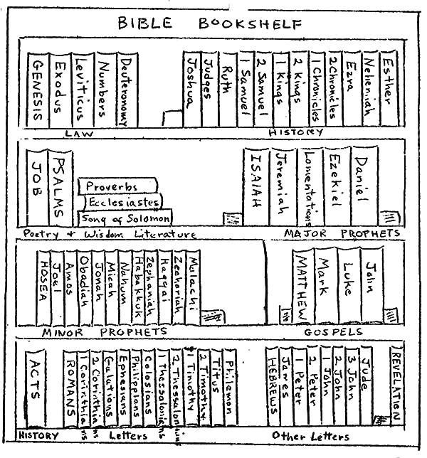 bible bookshelf coloring pages