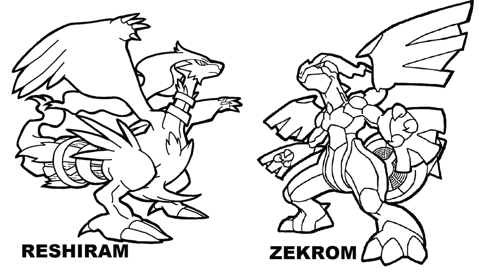 pokemon black and white coloring pages legendary