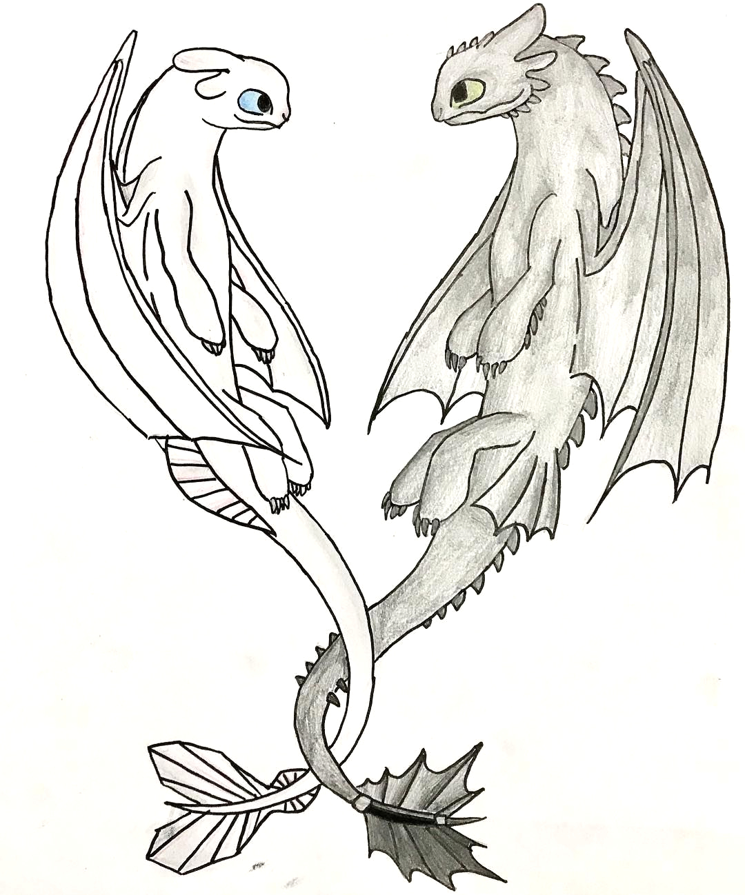 Toothless and Light Fury together Coloring Pages toothless and Light Fury to Her Coloring Pages Lautigamu