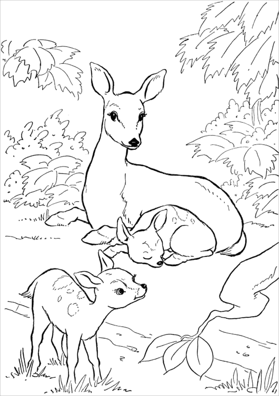Baby Animals and their Mothers Coloring Pages Baby Animals and Mom Coloring Pages Coloringbay
