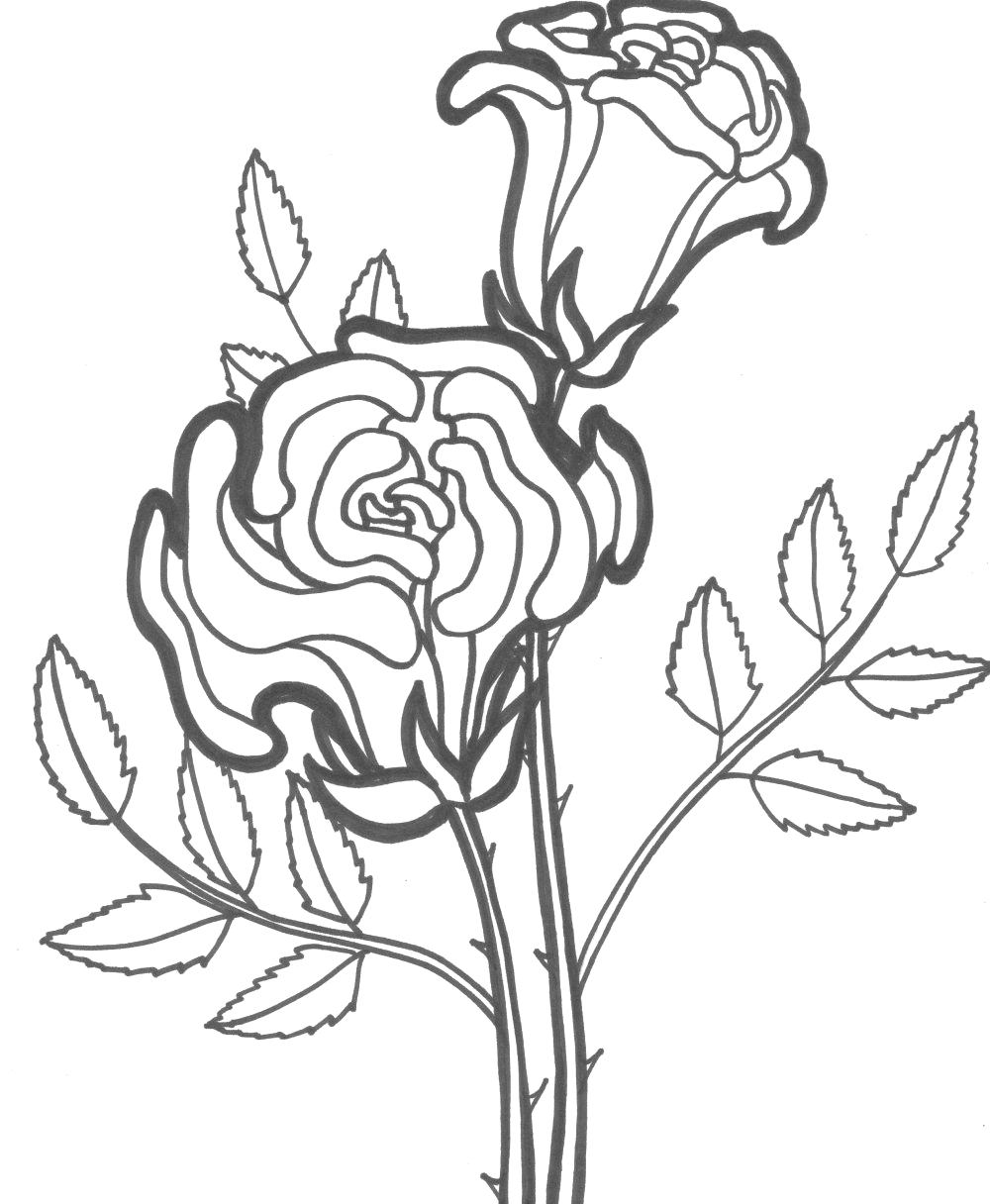 Day Of the Dead Coloring Pages Flowers Dead Flower Drawing at Getdrawings