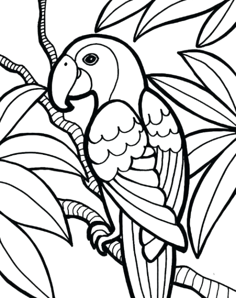 coloring worksheets for middle schoolers