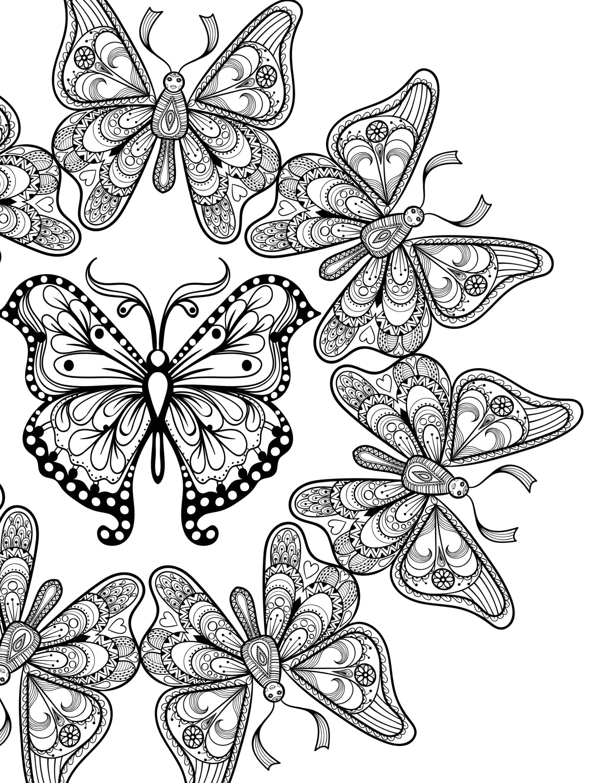 Free Printable butterfly Coloring Pages for Adults Free butterfly Colouring Pages for Adults