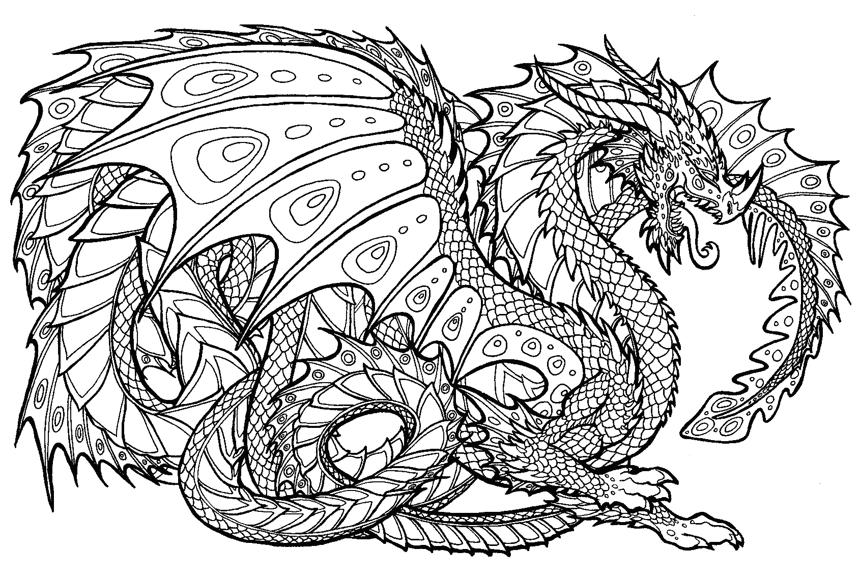 Free Printable Dragon Coloring Pages for Adults Dragon Coloring Pages for Adults Best Coloring Pages for