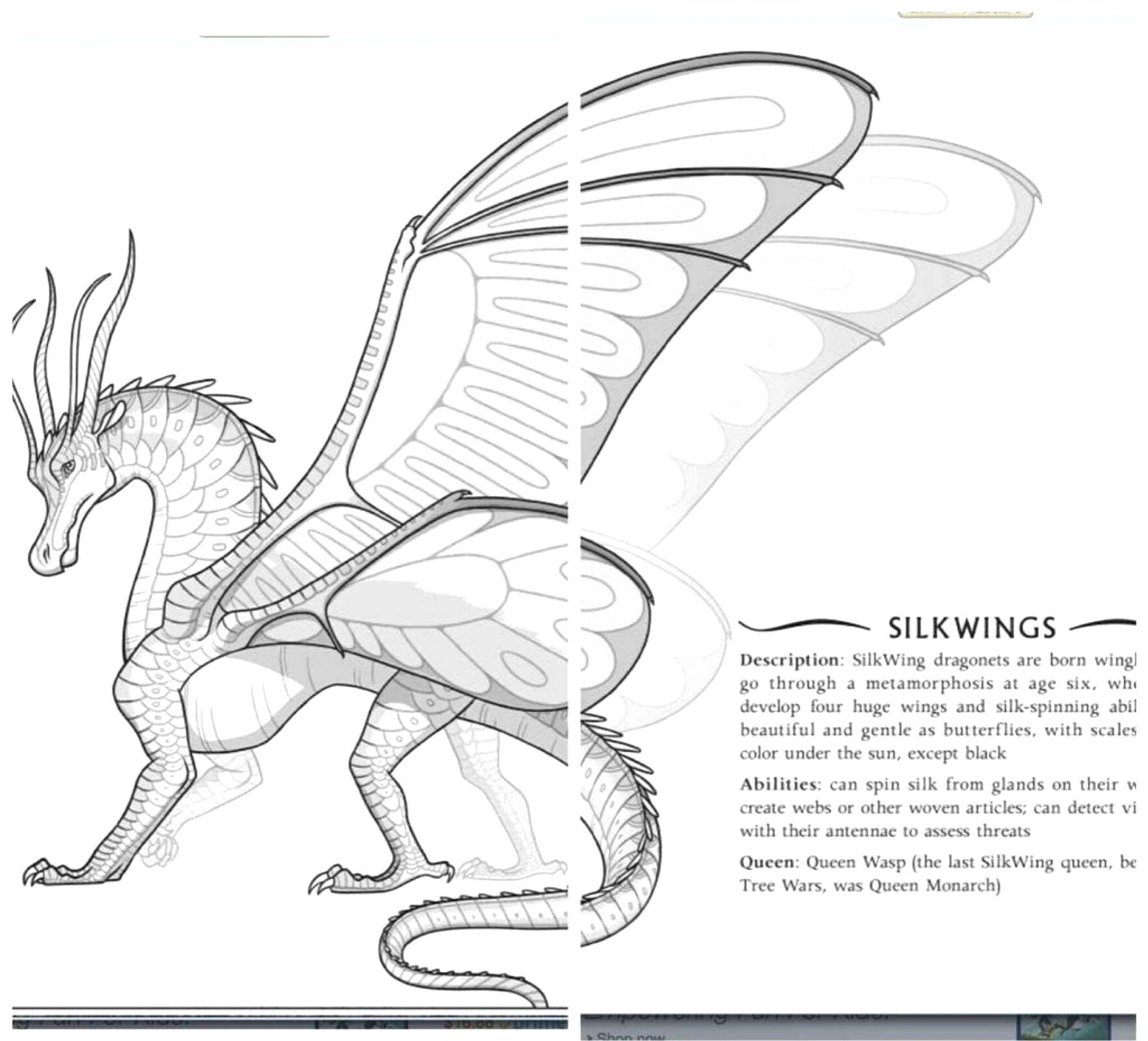 wings of fire coloring pages pictures