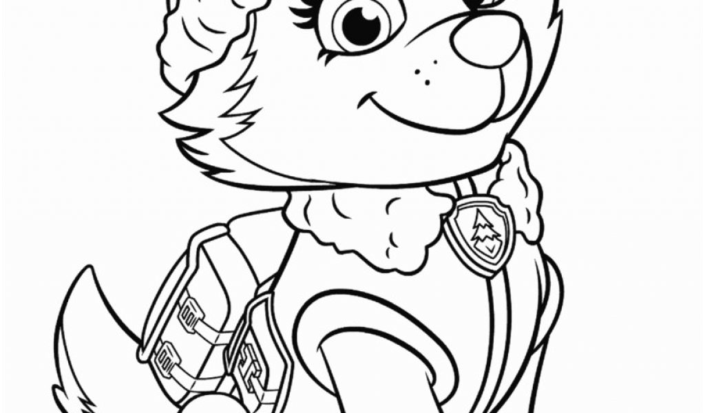 paw patrol skye and everest coloring