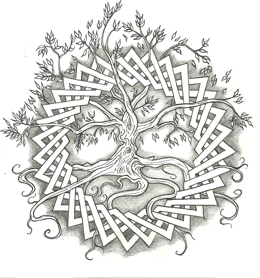 tree of life adult coloring sketch templates