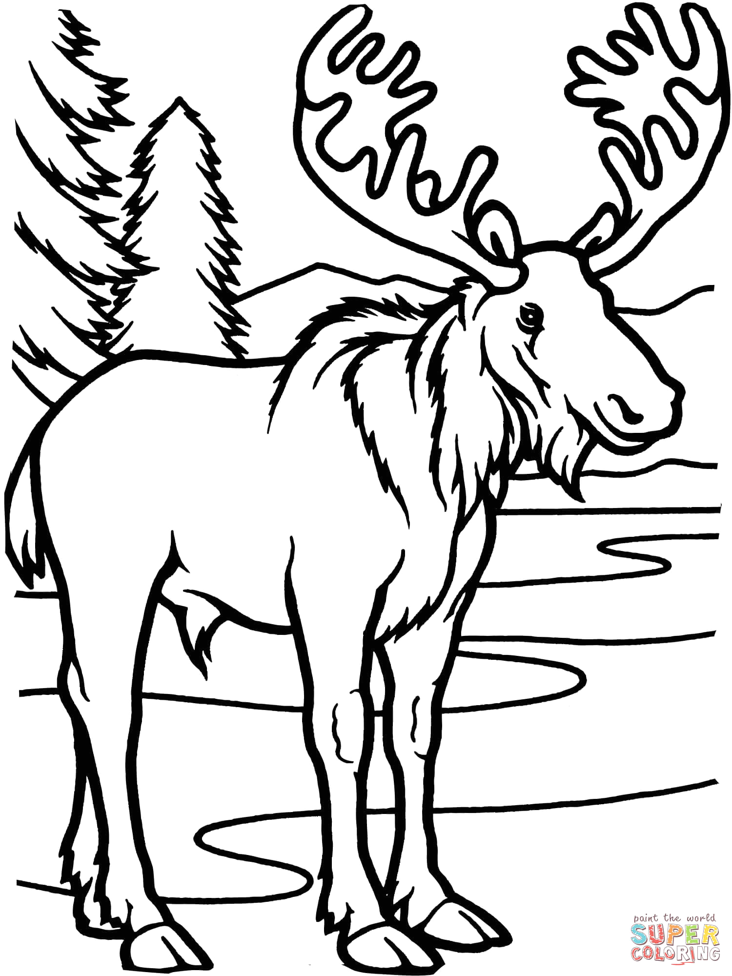 Camp Moose On the Loose Coloring Pages Moose Bull Coloring Line