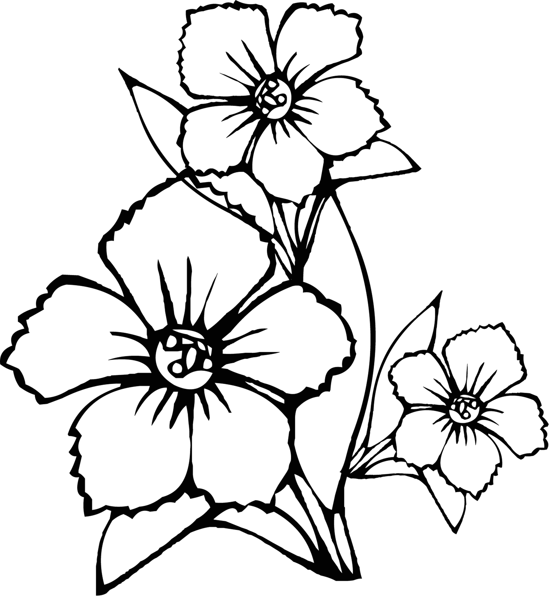 Free Coloring Pages Of Flowers for Kids Free Printable Flower Coloring Pages for Kids Best