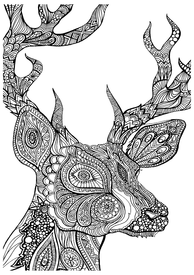 Free Printable Deer Coloring Pages for Adults Printable Coloring Pages for Adults 15 Free Designs