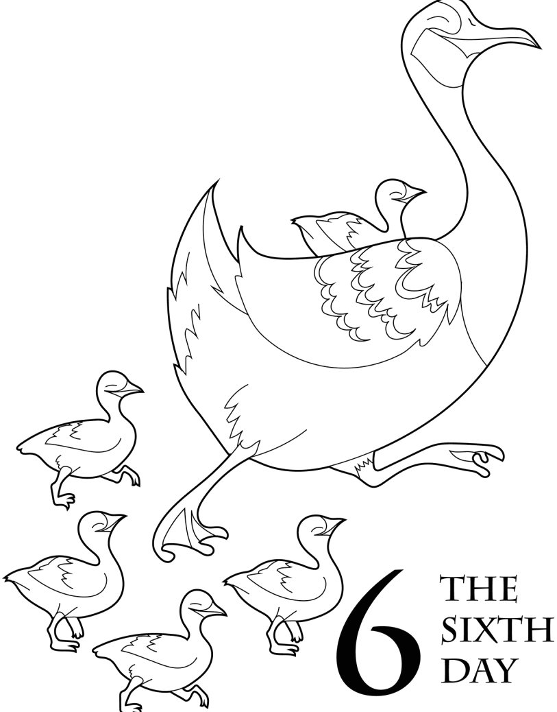 12 days christmas coloring book