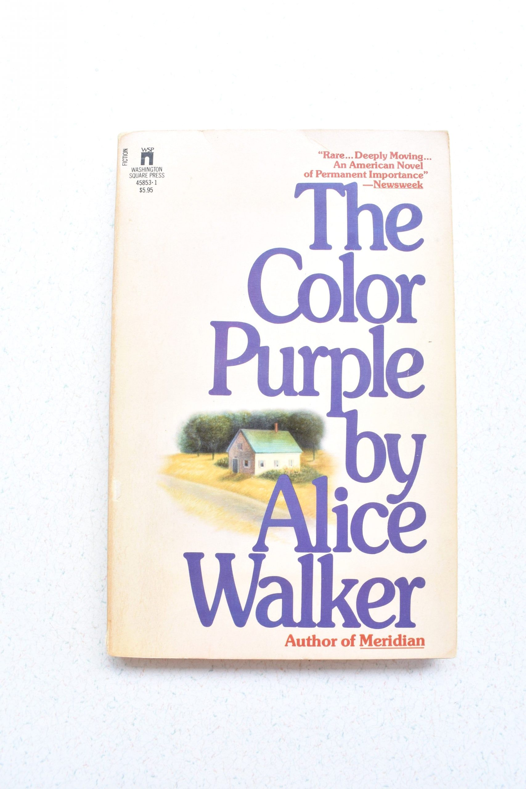 The Color Purple Alice Walker Page Count the Color Purple by Alice Walker Paperback 1983 Vintage
