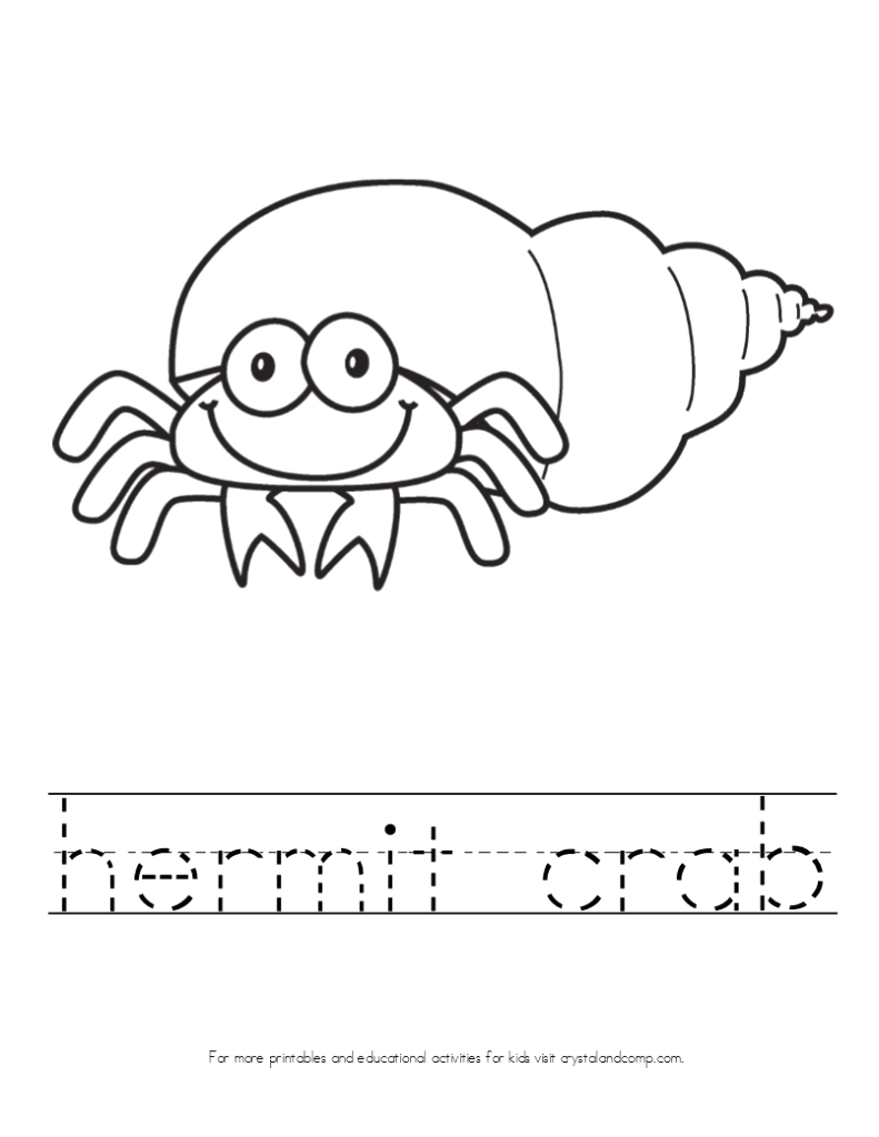 hermit crab shell template