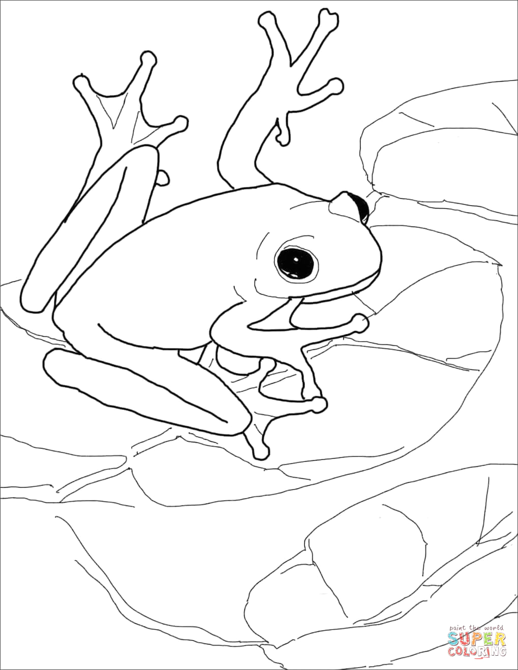 red eyed tree frog coloring page