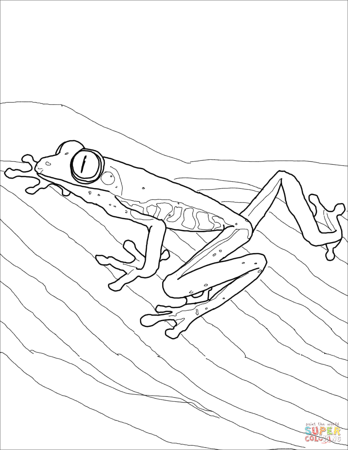 Coloring Pages Of Red Eyed Tree Frogs Red Eyed Tree Frog Coloring Page