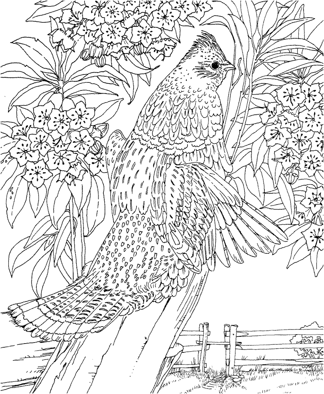 Difficult Coloring Pages for Adults to Print Get This Difficult Adult Coloring Pages to Print Out