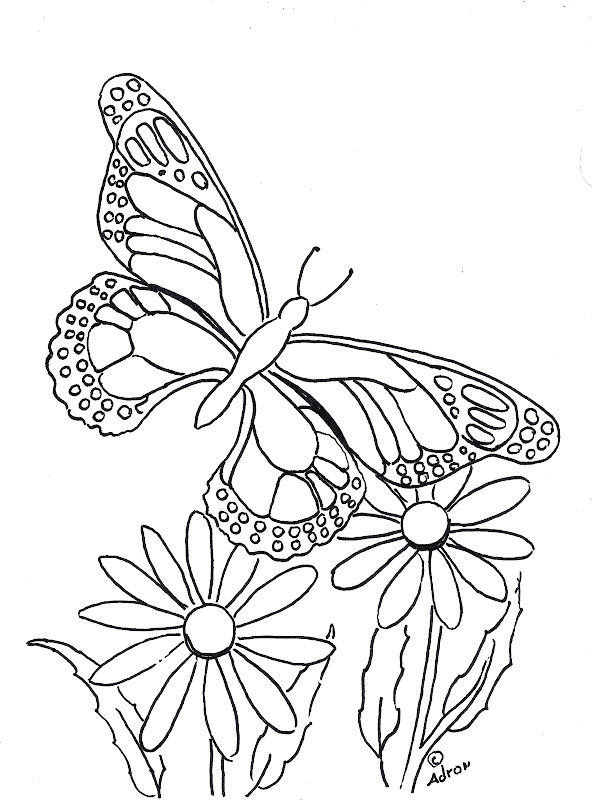 printable butterfly and flower coloring