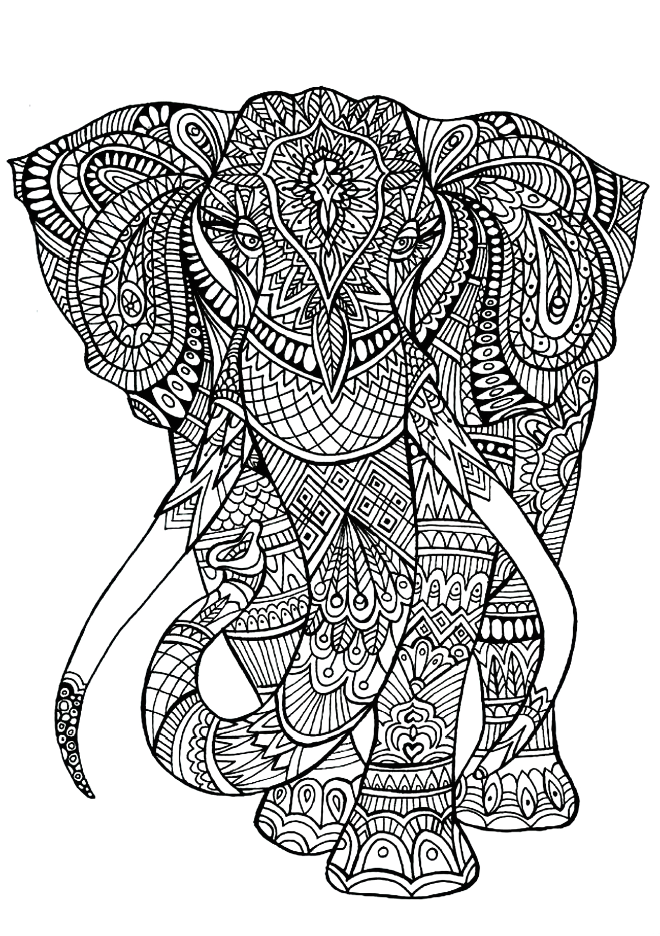 Free Printable Coloring Pages for Adults Animals Elephant Patterns