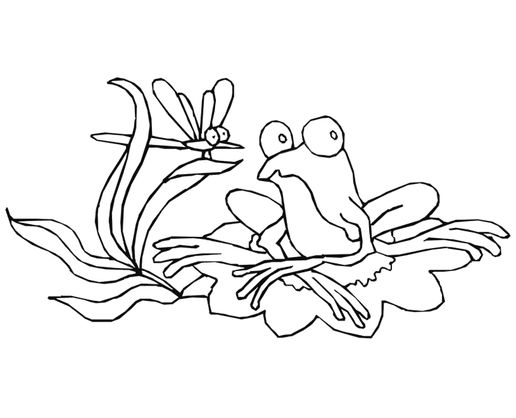 drawing frog on lily pad coloring page