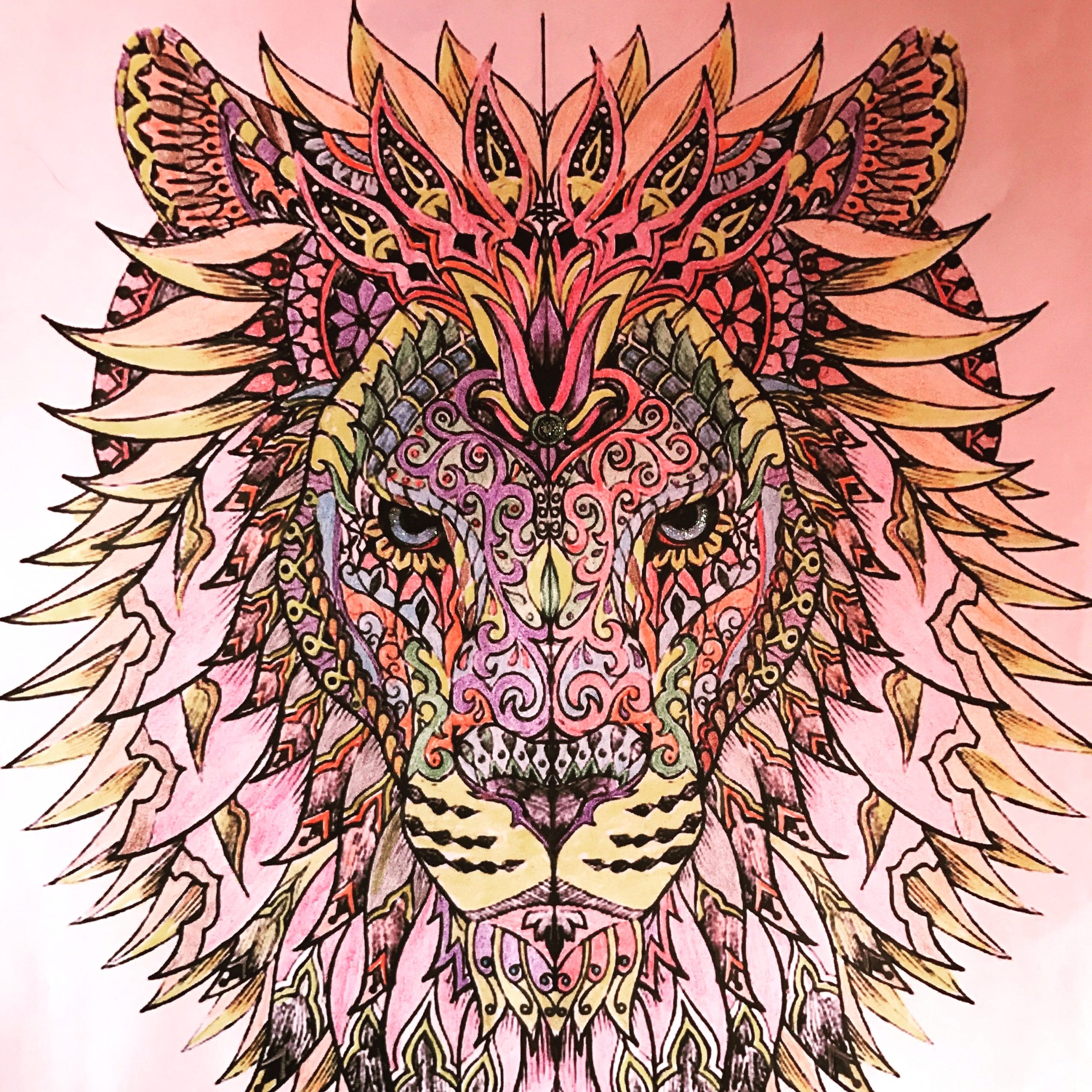 Lion Coloring Pages for Adults Already Colored 2 4 17 Beautiful Lion that I Colored with Colored Pencils