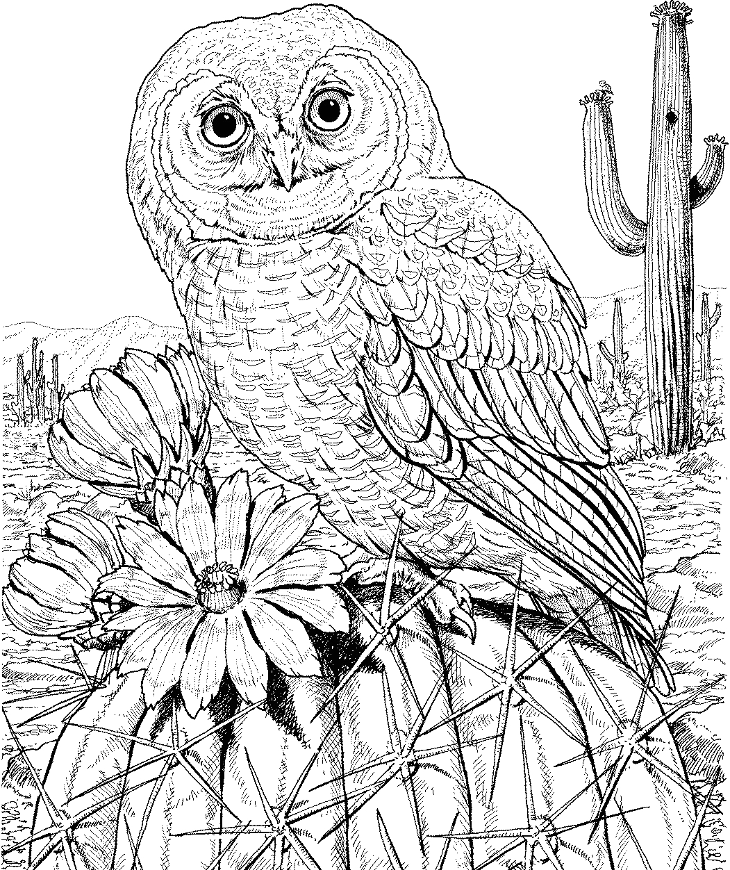 Owl Coloring Pages to Print for Adults 10 Difficult Owl Coloring Page for Adults