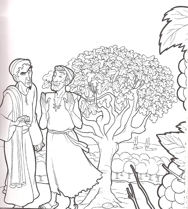 Parable Of the Fig Tree Coloring Page Fig Tree Coloring Page at Getcolorings