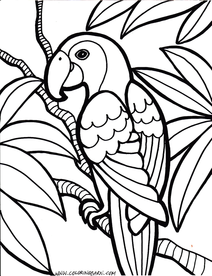Printable Coloring Pages for 11 Year Olds Coloring Pages 11 Year Olds