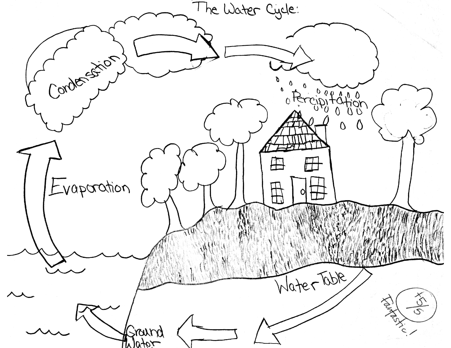 post the water cycle worksheet answers