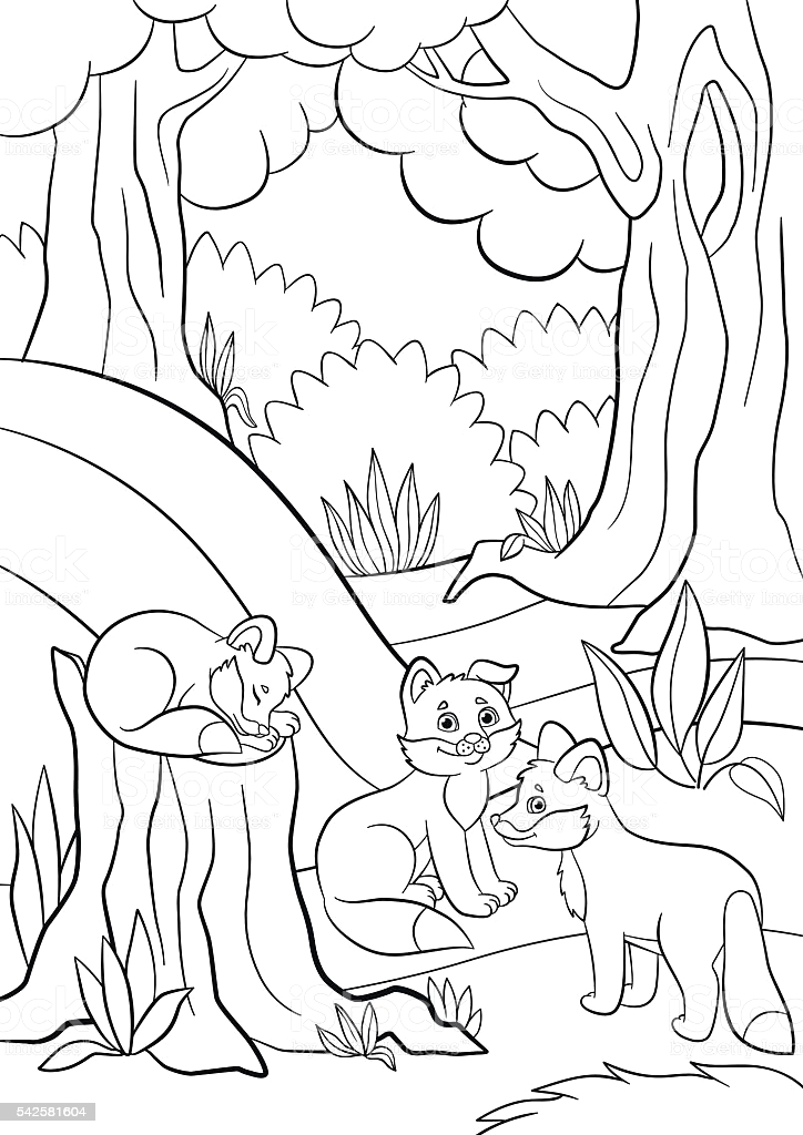 coloring pages wild animals three little cute baby fox gm