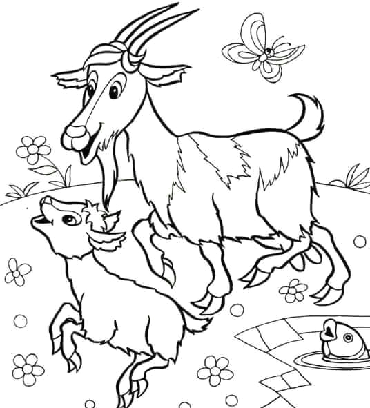 goat coloring pages 2