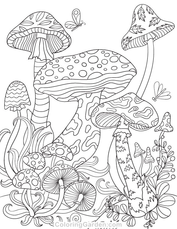 Free Printable Mushroom Coloring Pages for Adults Mushrooms Adult Coloring Page